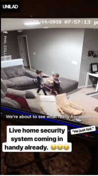 "Crying, Dank, and Home: UNILAD  10/11/2018 07:57:13 p  We're about to see What really happened  Live home securityejust ell  system coming in  handy already. ""My 3 year old ran to me crying and my 5 year old said he 'just fell'... So I decided to watch what really happened"" 😂😂"