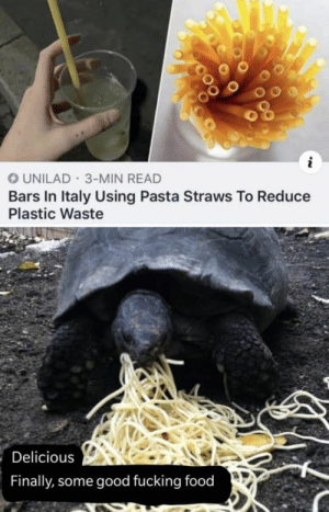 https://t.co/Xo4l1EYVy5: UNILAD 3-MIN READ  Bars In Italy Using Pasta Straws To Reduce  Plastic Waste  Delicious  Finally, some good fucking food https://t.co/Xo4l1EYVy5