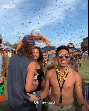 This is something you would NOT want to come across at a festival 🐝😱: UNILAD  Oh my god  PAUL VIEALHO This is something you would NOT want to come across at a festival 🐝😱