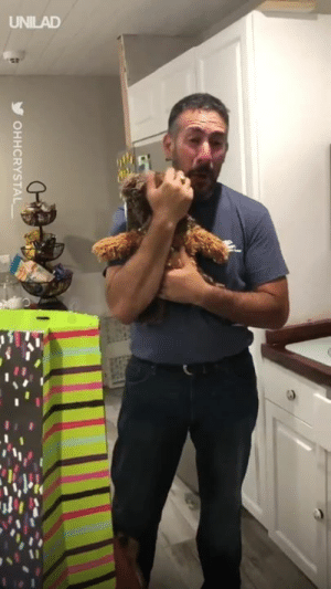'My Dad's reaction to finding out my sister is pregnant... I think we got him the best Father's Day gift ever!' 😍😭: UNILAD  OHHCRYSTAL 'My Dad's reaction to finding out my sister is pregnant... I think we got him the best Father's Day gift ever!' 😍😭
