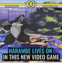 video game: UNILAD  OTAKUGANG.COM  ODI GUARD  HARAMBE  HARAMBE LIVES ON  IN THIS NEW VIDEO GAME