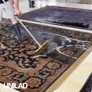Dank, Indianapolis, and Rugs: UNILAD Watching these guys clean rugs and carpets is SO satisfying! 😍👌  Oriental Rug Cleaning Indianapolis