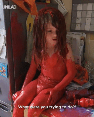 Dank, Kids, and Match: UNILAD  What were you trying to do?!  CONTENTBIBL Conclusive proof that unsupervised kids and paint are a match made from the darkest depths of hell...  CONTENTbible