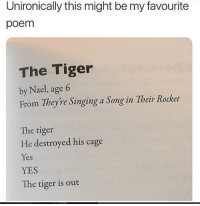 Memes, Singing, and Tiger: Unironically this might be my favourite  poem  The Tiger  by Nael, age 6  From They're Singing a Song in Their Rocket  The tiger  He destroyed his cage  Yes  YES  The tiger is out 30+ Random Memes And Posts To Keep You Entertained