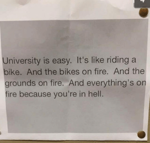 srsfunny:University Is A Piece Of Cake: University is easy. It's like riding a  bike. And the bikes on fire. And the  grounds on fire. And everything's on  fire because you're in hell. srsfunny:University Is A Piece Of Cake