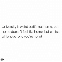 True, Weird, and Home: University is weird bc it's not home, but  home doesn't feel like home, but u miss  whichever one you're not at  SP This is so true