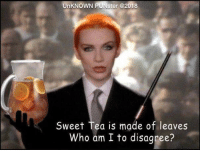 Annie Lennox is not everyones cup of tea.  #UnKNOWN_PUNster: UnKNOWN  ster @2018  Sweet Tea is made of leaves  Who am I to disagree? Annie Lennox is not everyones cup of tea.  #UnKNOWN_PUNster