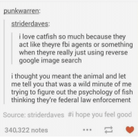 Catfished, Fbi, and Google: unkwarren  striderdaves  i love catfish so much because they  act like theyre fbi agents or something  when theyre really just using reverse  google image search  i thought you meant the animal and let  me tell you that was a wild minute of me  trying to figure out the psychology of fish  thinking they're federal law enforcement  Source: striderdaves #1 hope you feel good  340,322 notes rt to make someone's day https://t.co/x5MdHXK3tJ