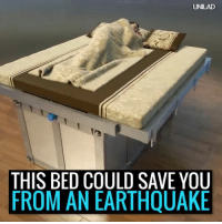 What happens when the rumble is from other things ??: UNLAD  THIS BED COULD SAVE YOU  FROM AN EARTHQUAKE What happens when the rumble is from other things ??