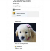 Dogs, Good, and Http: Unpopular opinion:  Not all dogs...  Are good boys  acidpanter  lankyadventurer  Blocked  Sometimes...  smileybonez  UNBLOCKED wholesome dogger:3 via /r/wholesomememes http://bit.ly/2HmVryS