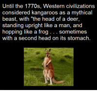 "Deer, Memes, and Beastly: Until the 1770s, Western civilizations  considered kangaroos as a mythical  beast, with ""the head of a deer  standing upright like a man, and  hopping like a frog sometimes  with a second head on its stomach."