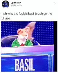 Amazing😂 @memezar is a must follow if you love memes: Up the ev  @EFCHazo  nah why the fuck is basil brush on the  chase  BASIL Amazing😂 @memezar is a must follow if you love memes