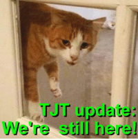 "Arguing, Driving, and Memes: update:  JT We're still here! WHAT COMES NEXT? Case update from Tiger's Justice Team  It may seem quiet around here lately, but that's about to change, with several actions pending in Kristen Lindsey's administrative, civil, and criminal cases. Here is a brief list of scheduled activities.  3RD COURT OF APPEALS: Lindsey is still trying to sue the Texas Board of Veterinary Medical Examiners, arguing that it lacks authority and jurisdiction to take disciplinary action against her. Lindsey's Appellate Brief is due by 10/10/16. We expect Lindsey's attorney Brian Bishop to submit a reiteration of arguments that were denied by the Travis County District Court judge, but maybe he'll surprise us with something new this time.   LINDSEY'S DWI: Lindsey's next scheduled appearance in Harris County Criminal Court is set for 10/12/16. Lindsey was arrested and charged with Driving While Intoxicated last March. She has made monthly court appearances throughout the prosecution of this case. Lindsey is also under an Ignition Interlock Restriction Order until otherwise decreed by the Court, which requires her to pay a monthly fee and submit the device for inspection and calibration every 30 days.   SOAH/TBVME: The Texas vet board plans to review Lindsey's licensing case and the SOAH Proposal for Decision during their quarterly meeting on 10/18/16. TJT representatives will attend and present ""citizen comments"" to the Board. TJT has also submitted written statements in support of full license revocation for the Board's consideration. We don't know whether a decision will be reached or announced at this meeting.   TJT and Tiger's supporters are following all of Lindsey's cases with great interest. We will continue to provide regular updates."