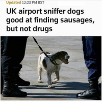 Dogs, Drugs, and Funny: Updated 12:23 PM BST  UK airport sniffer dogs  good at finding sausages,  but not drugs He's trying (@hilarious.ted)