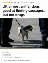 Dogs, Drugs, and Good: Updated Thu Apr 14, 2016 12:23 PM BST  UK airport sniffer dogs  good at finding sausages,  but not drugs  runwithskizzers  divinedorothy:  Let Him Have The Sausages  i almost scrolled past this, like some kind of idiot