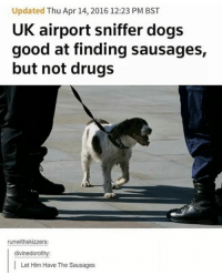 Dogs, Drugs, and Memes: Updated Thu Apr 14, 2016 12:23 PM BST  UK airport sniffer dogs  good at finding sausages,  but not drugs  runwithskizzers:  divine dorothy:  Let Him Have The Sausages I'm so tired of being insensitive to people's culture simply cause I don't know. I was never taught. Why were we never taught? I learned today that Korean and Chinese cultures have their own mythology. That seems like a basic fact anyone could and should know. We get taught the American Revolution 3 times in grade school (at least in the US) but we can't take about Korea?? Or basically any other non white country?? Now I'm out in the world clueless, embarrassing myself and offending others.
