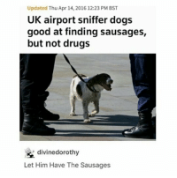 Dogs, Drugs, and Memes: Updated Thu Apr 14, 2016 12:23 PM BST  UK airport sniffer dogs  good at finding sausages,  but not drugs  divinedorothy  Let Him Have The Sausages It's been six hours I'm still not over just one day. Thanks for 74k guys