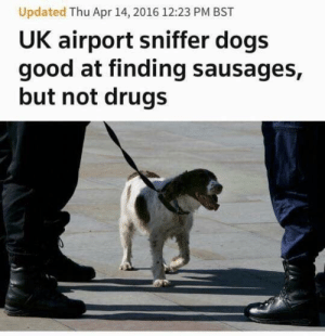Dogs, Drugs, and Good: Updated Thu Apr 14, 2016 12:23 PM BST  UK airport sniffer dogs  good at finding sausages,  but not drugs me irl