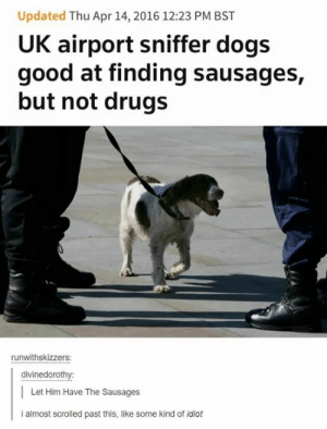 Dogs, Drugs, and Good: Updated Thu Apr 14, 2016 12:23 PM BST  UK airport sniffer dogs  good at finding sausages,  but not drugs  runwithskizzers:  divinedorothy:  Let Him Have The Sausages  i almost scrolled past this, like some kind of idiot Dog priorities