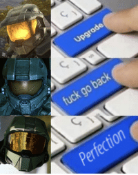 Halo, Fuck, and Back: Upgr  ade  fuck go back  Perfection