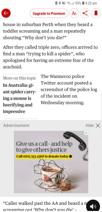 "Police, Spider, and Twitter: Upgrade to PremiumAA  house in suburban Perth when they heard a  toddler screaming and a man repeatedly  shouting ""Why don't you die?""  After they called triple zero, officers arrived to  find a man ""trying to kill a spider"", who  apologised for having an extreme fear of the  arachnid  More on this topic  In Australia: gi-  ant spider carry  ing a mouse is  horrifying and  The Wanneroo police  Twitter account posted a  screenshot of the police log  of the incident on  Wednesday morning  mpressive  Advertisement  HideX  Give us a call -and help  to give others justice  Call 0203 353 4368 to donate today  ""Caller walked past the AA and hearda  screaming out 'Why don't vou die'"