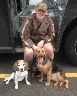 ups-dogs:Met my hubby on his lunch break and the puppies got to visit with him :) Both are rescued from Oregon Humane Society! Thank you Corrie: ups-dogs:Met my hubby on his lunch break and the puppies got to visit with him :) Both are rescued from Oregon Humane Society! Thank you Corrie