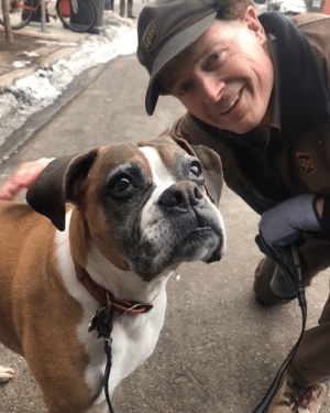 ups-dogs:This was a harder pic to get than I thought, thanks for the fun page to see all the different pups!My 12 yr old boxer Cleopatra visiting her favorite delivery guy in town Don! From Ann Arbor Michigan: ups-dogs:This was a harder pic to get than I thought, thanks for the fun page to see all the different pups!My 12 yr old boxer Cleopatra visiting her favorite delivery guy in town Don! From Ann Arbor Michigan