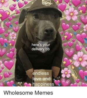 Love, Memes, and Ups: ups  here's your  delivery bb  endless  love and  happiness  Wholesome Memes Special delivey 😍