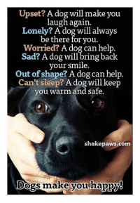 Dogs, Memes, and Help: Upset? A dog will make you  laugh again  Lonely? A dog will always  be there for you.  Worried? A dog can help.  Sad? A dog will bring back  your smile.  Out of shape? A dog can help.  Can't sleep? A dog will keep  you warm and safe.  shakepaws.com  Dogs make vou happN