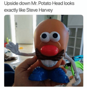 Upside down Mr. Potato Head looks  exactly like Steve Harvey Steve The potato Head
