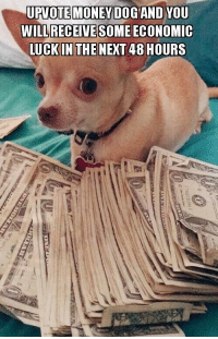 Money: UPTOTTE MONEY DOG AND YOU  WILL RECEIVE SOME ECONOMIC  TUCKINTHE NEXT 48HOURS