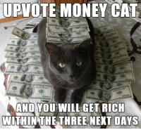 meow irl: UPVOTE MONEY CAT  AND YOU WILL GET RICH  WITHIN THE THREE NEXT DAYS meow irl