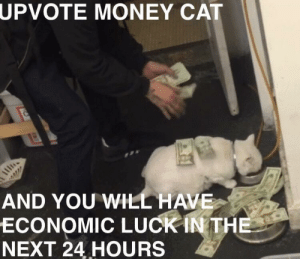 Me irl by Gilbon-Baggins MORE MEMES: UPVOTE  MONEY CAT  AND YOU WILL HAVE  ECONOMIC LUCK İNTHE  NEXT 24 HOURS Me irl by Gilbon-Baggins MORE MEMES