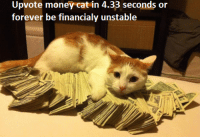 money cat: Upvote money cat in 4.33 seconds or  forever be financialy unstable