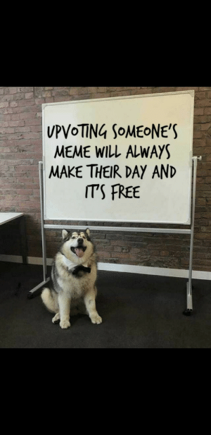 Meme, Free, and Day: UPVoTİNG SOMEONE'S  MEME WILL ALWAYS  MAKE THEIR DAY AND  ITS FREE Its free after all UwU