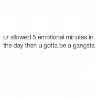 M. Musing Memes: ur allowed 5 emotional minutes in  the day then u gotta be a gangsta M. Musing Memes
