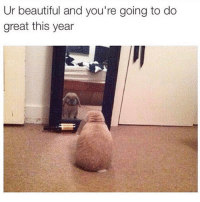 Memes, 🤖, and Great: Ur beautiful and you're going to do  great this year Monday morning motivation!!