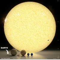 This image shows the relative size of each planet compared to our sun. As illustrated, the sun contains 99.86% of the mass in our solar system. At 864,000 miles, the sun's diameter is roughly 109 times larger than the diameter of the Earth, and weighs more than 333,000 times more as well. Over 1.3 million Earths could fit inside the sun. By comparison, however, our sun is only average sized as far as stars go. One of the largest known stars, the supergiant VY Canis Major, is over 2,000 times larger than our own sun. You could fit over 9.3 billion of our suns inside VY Canis Major. science sun space solarsystem: Uranu  Saturn  EARTH  Vn  Our Solar System  Planetary Orbits  Sun This image shows the relative size of each planet compared to our sun. As illustrated, the sun contains 99.86% of the mass in our solar system. At 864,000 miles, the sun's diameter is roughly 109 times larger than the diameter of the Earth, and weighs more than 333,000 times more as well. Over 1.3 million Earths could fit inside the sun. By comparison, however, our sun is only average sized as far as stars go. One of the largest known stars, the supergiant VY Canis Major, is over 2,000 times larger than our own sun. You could fit over 9.3 billion of our suns inside VY Canis Major. science sun space solarsystem