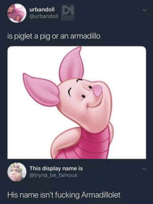 Dank, Fucking, and Boi: urbandoll  ourband DANK  is piglet a pig or an armadillo  This display name is  @tryna_be famous  His name isn't fucking Armadillolet Dont disrespect my boi Piglet