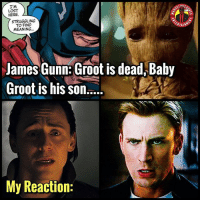 Tag @jamesgunn in the comments so he knows he just tore out our souls and stepped on them 😂, tbh it's not that big of a deal because he's still a plant so it's basically the exact same being minus the memories but it's still such a funny thing to randomly tweet. @jamesgunn y bro . MarvelousJokes: us  LOST  HERE  STRUGGLING  TO FIND  MEANING..  ERTA  James Gunn: Groot is dead,Balby  My Reaction: Tag @jamesgunn in the comments so he knows he just tore out our souls and stepped on them 😂, tbh it's not that big of a deal because he's still a plant so it's basically the exact same being minus the memories but it's still such a funny thing to randomly tweet. @jamesgunn y bro . MarvelousJokes