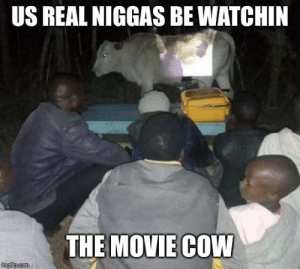 Movie, Com, and Cow: US REAL NIGGAS BE WATCHIN  THE MOVIE COW  imgiip.com movie cow