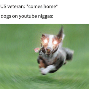 *bass boosted ligma*: US veteran: *comes home*  dogs on youtube niggas: *bass boosted ligma*