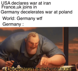 Sorry force of habit: USA declares war at iran  France,uk joins in  Germany decelerates war at poland  World: Germany wtf  Germany :  Liebesraum is-liebensraum Sorry force of habit