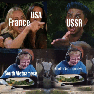 France, Trees, and Ussr: USA  France  USSR  North Vietnamese  South Vietnamese I am the lorax and I speak for the trees