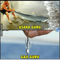Indonesian (Language) and Guru: USAHA GURU  GAJI GURU