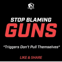 Guns, Memes, and 🤖: USCCA  STOP BLAMING  GUNS  *Triggers Don't Pull Themselves*  LIKE & SHARE
