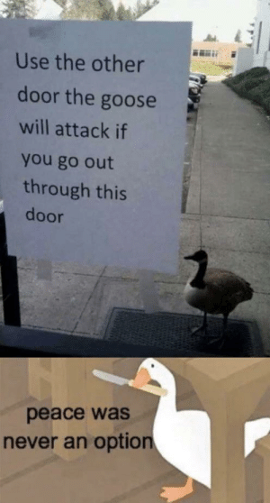 goose: Use the other  door the goose  will attack if  you go out  through this  door  peace was  never an option