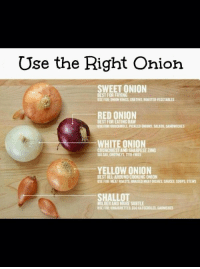 https://t.co/9CxWb2O4AF: Use the Right Ohion  SWEET ONION  BEST FOR FRYING  BSE FOR ONION RINGS. GAATINS ROASTED VEGETABLES  RED ONION  BEST FOR EATINGRAW  OSEFOREGUACAMOULPICKLEDONIONS, SALADS, SANDWICHES  WHITE ONION  CRUNCHIESTANDSHARPEST ZING  SALSAS, CHUTNEYS STIR FRIES  YELLOW ONION  BESTALLAROUNDCOOKING ONION  USE FOR:MEATROASTS, BRAISEDMEATDISHES, SAUCES, SOUPS STEWS  SHALLOT  MILDER AND MORE SUBTLE  USE FOR: VINAIGRETTES, ECGCASSEROLES,GARNISHES https://t.co/9CxWb2O4AF