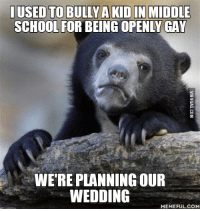 Wedding Meme: USED TO BULLY A KID IN MIDDLE  SCHOOL FOR BEING OPENLY GAY  WERE PLANNING OUR  WEDDING  MEMEFUL COM