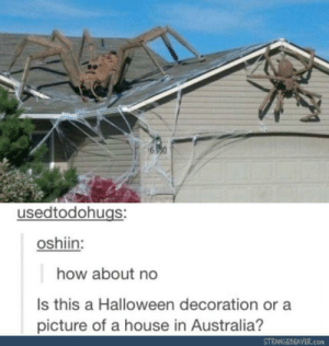 Halloween, Australia, and House: usedtodohugs:  oshiin:  how about no  Is this a Halloween decoration or a  picture of a house in Australia?  STRANGEBEAVER.com The apocalypse